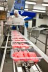 Oferta pracy w Niemczech przy pakowaniu mięsa bez języka Rheda-Wiedenbrück