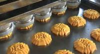 Oferta pracy w Holandii na linii produkcyjnej ciastek Nieuwkeijk