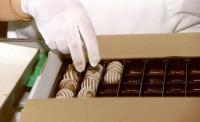 Holandia praca na linii produkcyjnej przy pakowaniu czekolady bez języka