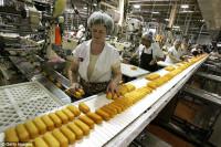 Oferta pracy w Holandii na produkcji przy pakowaniu bez języka Almere