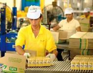 Oferta pracy w Anglii na produkcji przy pakowaniu żywności Skelmersdale