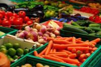 Niemcy praca przy zbiorach warzyw i owoców na rok 2015 bez języka