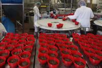 Oferta pracy w Anglii przy produkcji puddingów Manchester UK bez języka