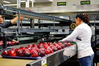 Holandia praca w Zwaagdijk przy pakowaniu warzyw od zaraz bez języka