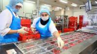 Produkcja wędlin Holandia praca pakowanie od zaraz bez języka Nijmegen