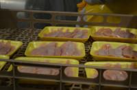 Praca w Holandii na produkcji przy pakowaniu drobiu Goor bez języka