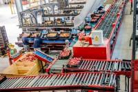 Bez znajomości języka fizyczna praca Niemcy sortowanie warzyw Monachium