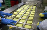 Niemcy praca przy pakowaniu sera bez języka Hamburg od zaraz dla par