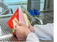 Bez znajomości języka praca Niemcy pakowanie sera na produkcji od zaraz Dortmund