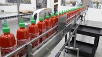Praca w Holandii na produkcji sosów od zaraz bez znajomości języka Nieuw Vennep