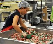 Praca w Anglii na magazynie od zaraz przy pakowaniu słodyczy Milton Keynes