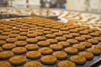 Ogłoszenie pracy w Niemczech bez znajomości języka od zaraz pakowanie ciastek Kolonia