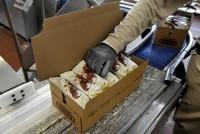 Produkcja lodów praca Niemcy bez znajomości języka od zaraz Hamburg