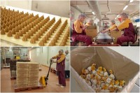 Holandia praca od zaraz przy pakowaniu cukierków bez znajomości języka Veghel