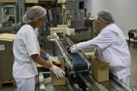 Oferta pracy w Holandii przy pakowaniu żywności od zaraz bez języka Beilen