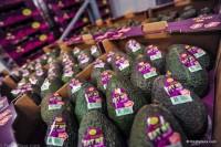 Praca w Szwecji od zaraz przy pakowaniu owoców bez znajomości języka Sztokholm