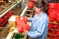 Bez języka oferta pracy w Szwecji na produkcji zabawek od zaraz Uppsala
