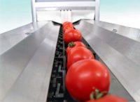 Od zaraz fizyczna praca w Niemczech dla par bez języka Berlin sortowanie warzyw