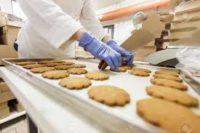 Holandia praca 2019 jako pakowacz na produkcji ciastek od zaraz w fabryce z Harderwijk