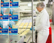 Przy pakowaniu sera dla par praca Dania od zaraz bez znajomości języka 2019 Aalborg